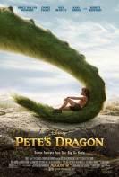 Mi amigo el Dragon (2016)