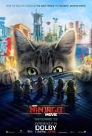 Lego Ninjago La Pelicula (2017)